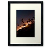 Vineyard Sunset Framed Print