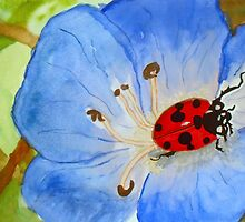 LadyBug on Morning Glory by TrixiJahn