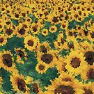 Vintage Sunflower painting art  by Nhan Ngo