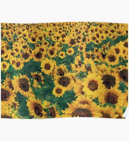 Vintage Sunflower painting art  Poster