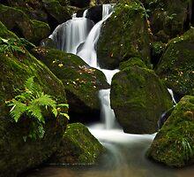 Waterfall by Martin Rak