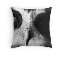 Archimedes Throw Pillow