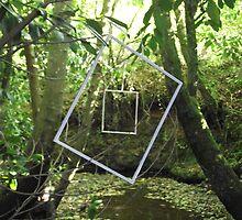 Protruding natures lines #11 by Tom Fletcher