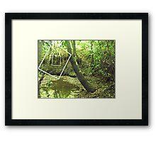 Protruding natures lines #14 Framed Print