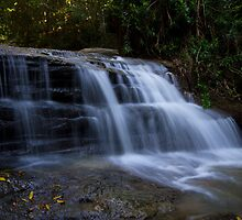 Martins Creek Budrim by Steve Bass