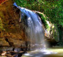 Serenity Falls - Buderim QLD by Steve Bass