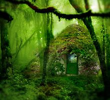 Home of the Forest Druid by WhisperingCrows