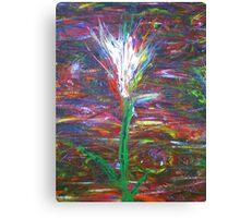 Twilight Tulip Canvas Print