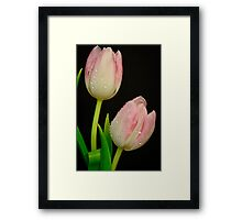 Double Look  Forward to Spring Framed Print