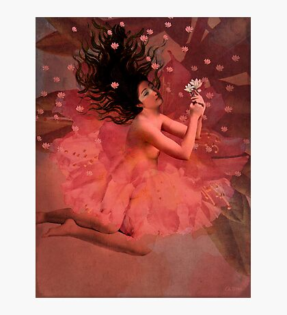 Blooming dreams Photographic Print