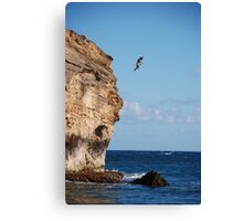 Shipwreck Beach 30 Canvas Print