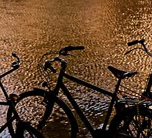 Silhouetted bicycles along a canal in Amsterdam, Holland by Michael Brewer