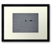 Mother's Sweetheart - Preferida De Mama Framed Print