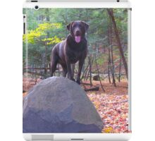 Rin Tin Lab iPad Case/Skin