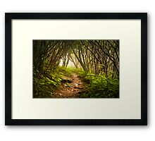 Appalachian Hiking Trail - Blue Ridge Mountains Forest Fog Nature Landscape Framed Print