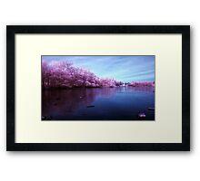 Candy Floss Lake Framed Print