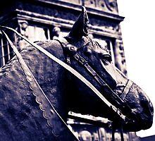 Bremer Horse by A.David Holloway