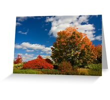 Blazing Landscape Greeting Card