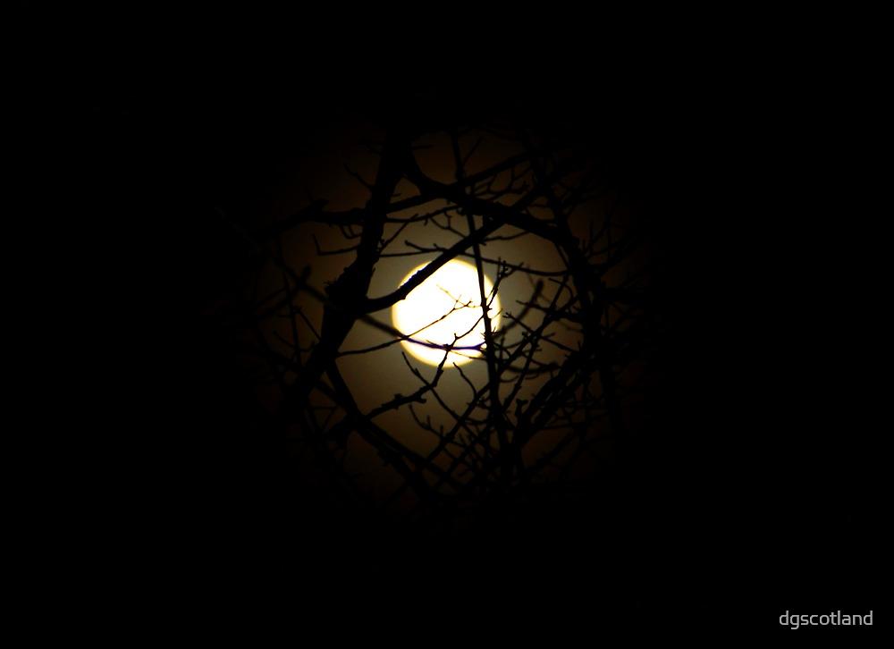 Dark Moon Rising by dgscotland
