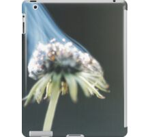 Up In Flames iPad Case/Skin