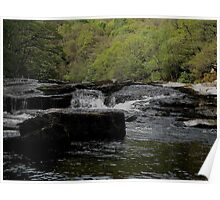 Dartmoor River Dart Rowbrook Late April 2011 Poster