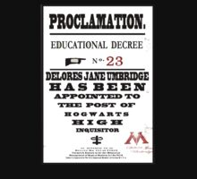 Harry Potter Proclamation by darkrain326