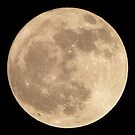 Full Moon 7th Feb 2012 by qshaq