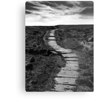 Lifes Paths Are Never Straight But Over The Horizon May Be Your Dream Metal Print