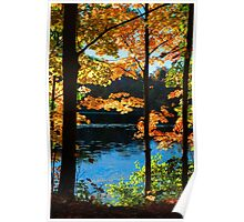 Foliage by the Nashua River Poster