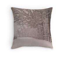 Path into the storm Throw Pillow