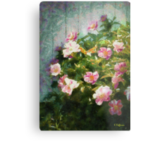 The Queen of The Peony Metal Print