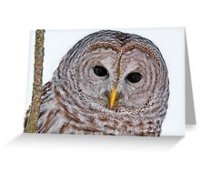 Hi There Greeting Card