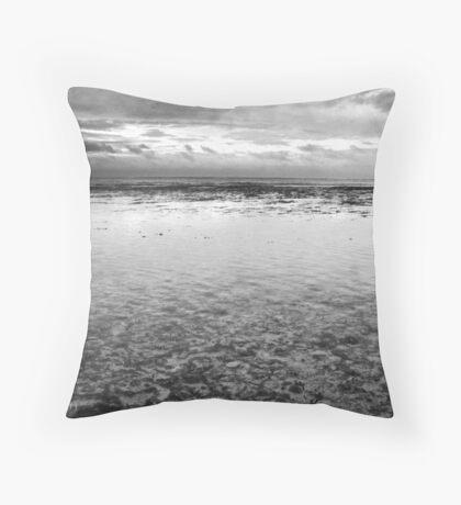 Soft Salt Throw Pillow
