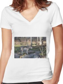 A lone timber wolf in the woods Women's Fitted V-Neck T-Shirt