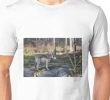 A lone timber wolf in the woods Unisex T-Shirt