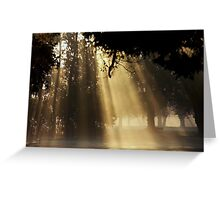 Curtain of Light Greeting Card