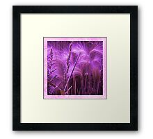 Pretty Grasses Framed Print
