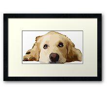 Chillin Pup  Framed Print