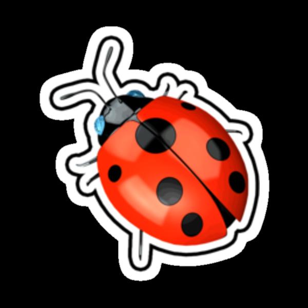 LadyBug by MarkSeb