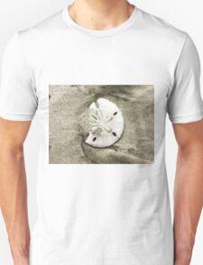 Sand Dollar Shell T-Shirt