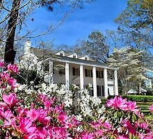 Springtime In Alabama by RickDavis
