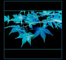 Electric blue leaves on black by AlysonArtShop