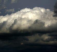 The Cloud by Turi Caggegi