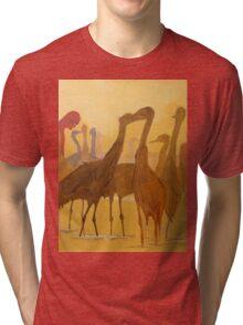 Shapes..just shapes Tri-blend T-Shirt