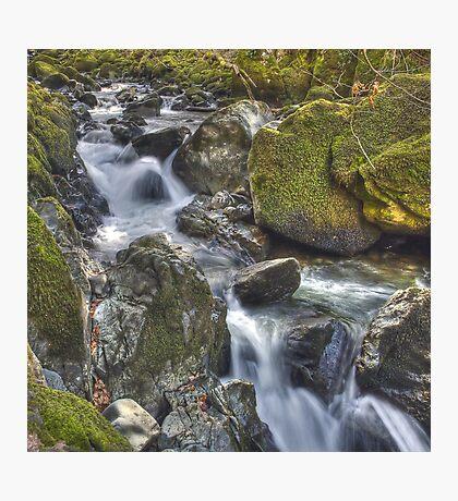 Torrent Walk, near Dolgellau, Wales Photographic Print