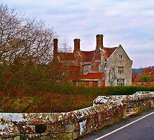 Woolbridge Manor by Mike Streeter