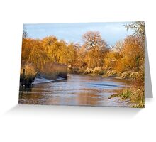 Willow Bank Greeting Card