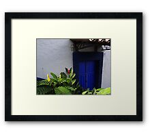 Tropical Calours And Plants - Colores Y Plantas Tropicales Framed Print