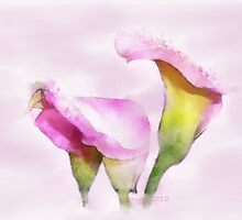 Pink Serenity by Carolyn Wright