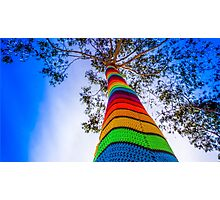 Yarn Bombed Tree, Swanston Street, Melbourne Photographic Print